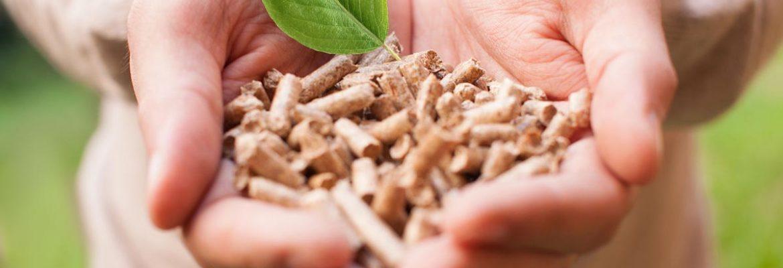 las-ventajas-del-uso-de-la-biomasa