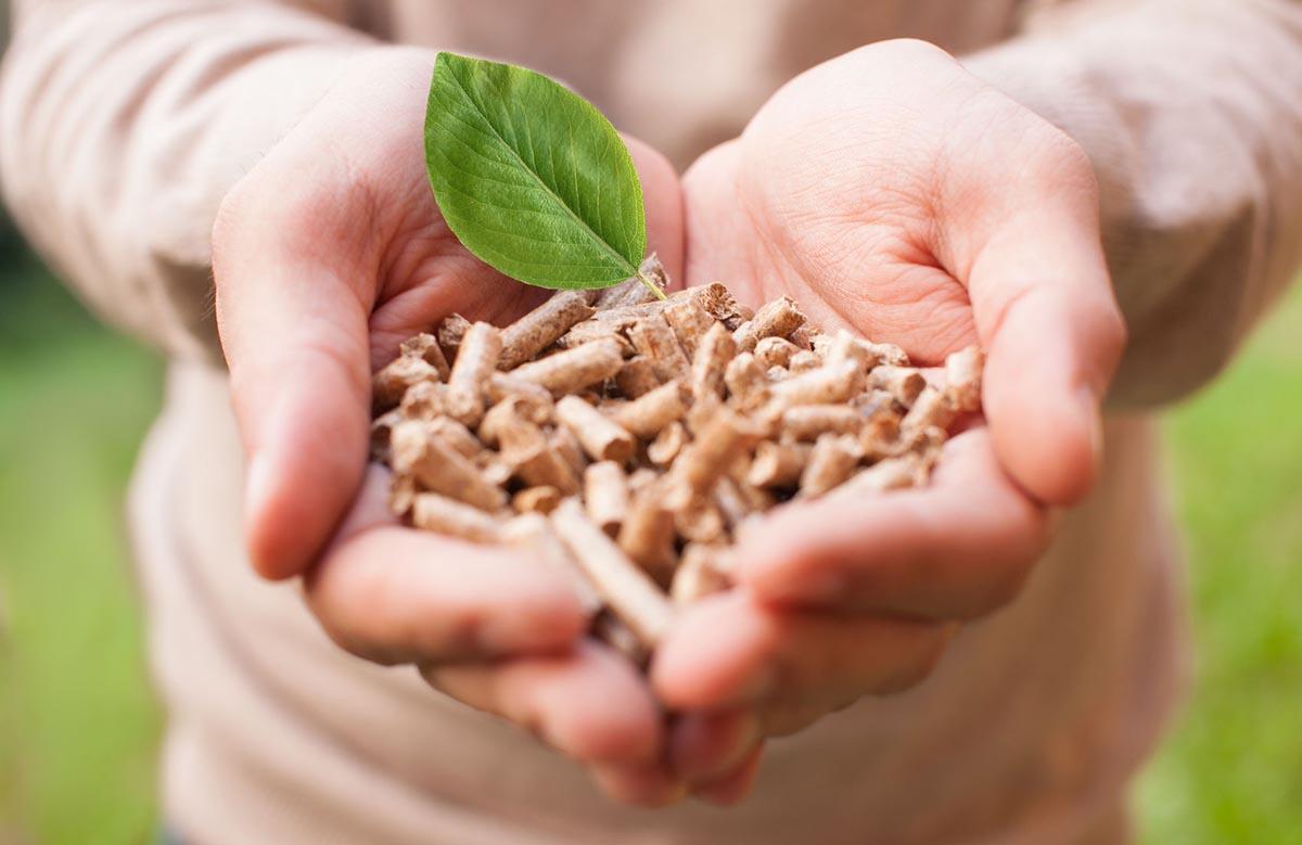 Las ventajas del uso de la biomasa