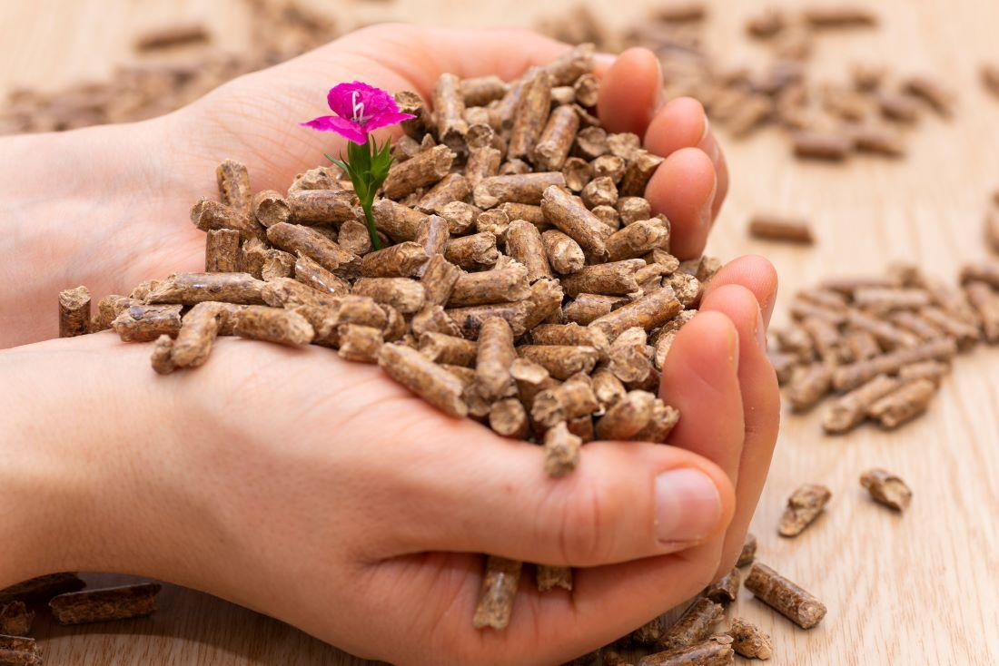 calderas-de-biomasa-un-paso-mas-contra-el-cambio-climatico